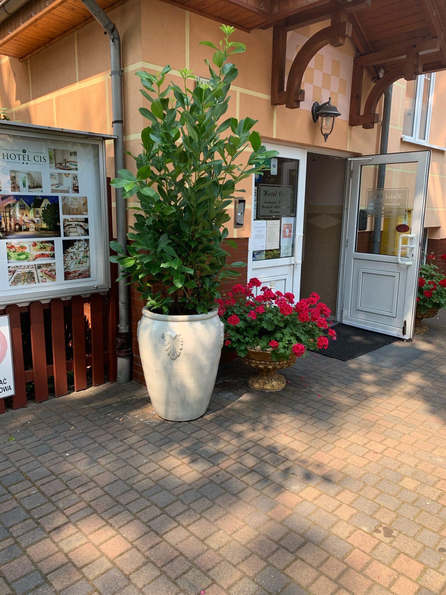 wejście-do-hotelu